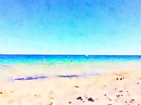Ocean Wonder by Emily Navas art print