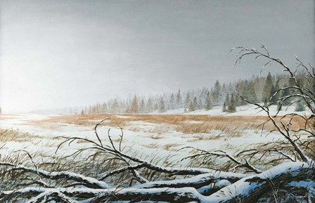 Snowy Morning by Bruce Nawrocke art print
