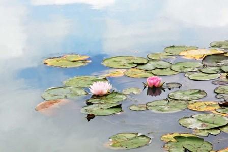 Monet's Garden by Brooke T. Ryan art print