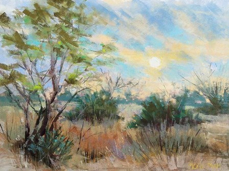 Texas Sunrise by Nancie King Mertz art print