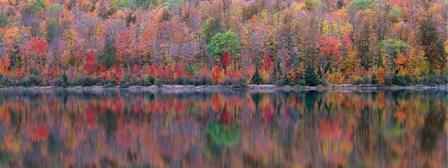 Upson Lake Reflection by Jim Becia art print