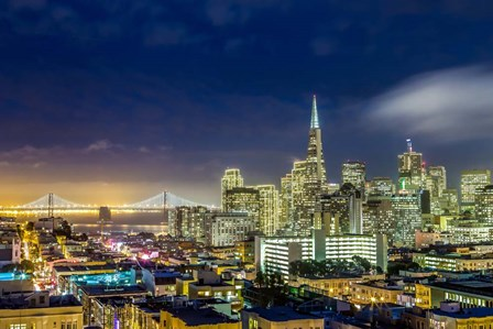 San Francisco Holiday Lights by Dave Gordon art print