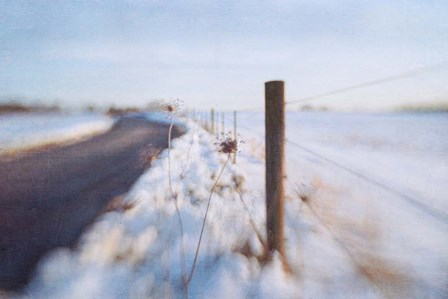 Walking on the Edge of Winter by Dawn Hanna art print