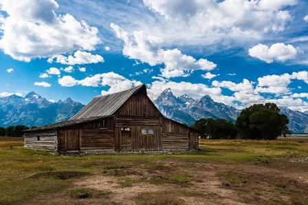 Grand Teton Barn I by Tim Oldford art print