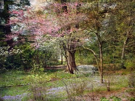 Spring by John Rivera art print