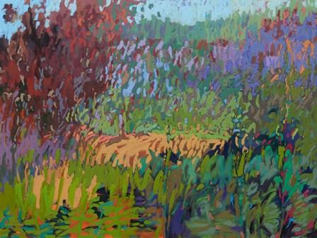 Color Field No. 72 by Jane Schmidt art print