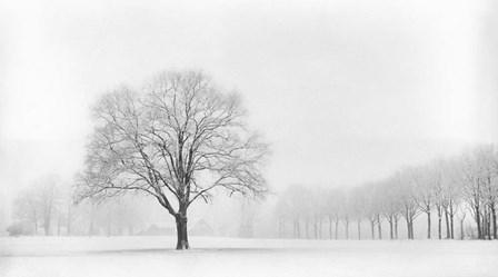 Standing Alone by Lars Van De Goor art print