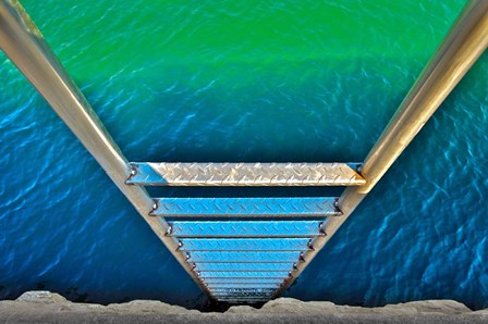 Sea Ladder by Verne Varona art print