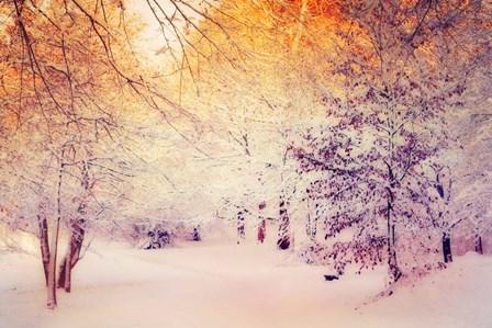 Snowy Sunrise by Dirk Wüstenhagen art print