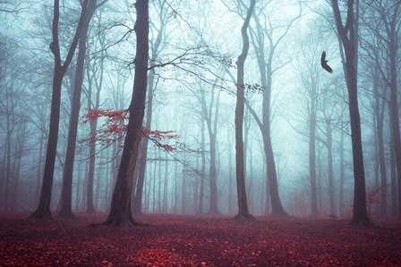 Solstice in Fog by Dirk Wüstenhagen art print