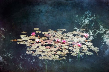 Waterlilies by Dirk Wüstenhagen art print
