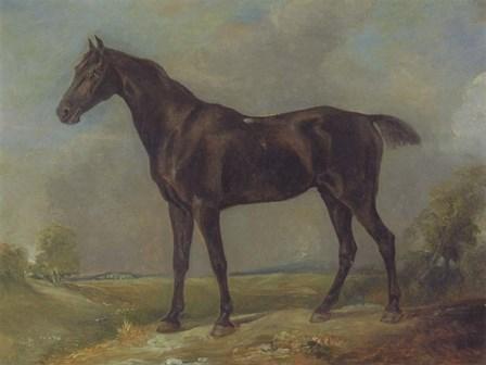 Golding Constable's Black Riding-Horse by John Constable art print