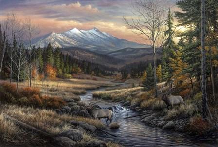 A Wanderers Dream by Chuck Black art print