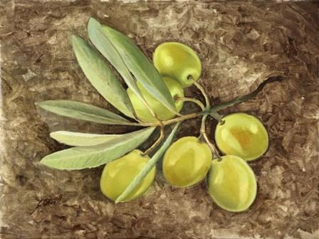 Olive by Guido Borelli art print