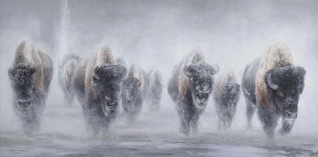 Giants in the Mist II by James Corwin Fine Art art print