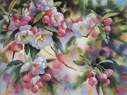 Crab Apple Blossoms I by Svetlana Orinko art print