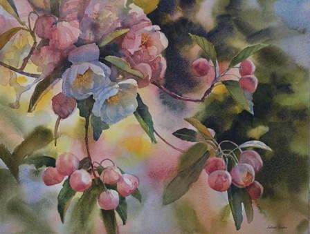 Crab Apple Blossoms II by Svetlana Orinko art print