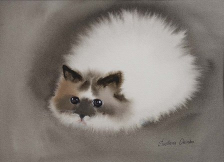 Fluffy White Cat by Svetlana Orinko art print