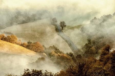Awakening Fields by Lars Van De Goor art print