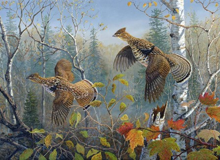 October Wings by Terry Doughty art print