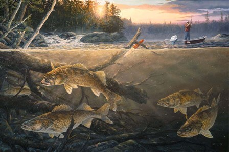 Walleye In The Wood by Terry Doughty art print