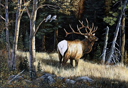 Elk by Terry Doughty art print