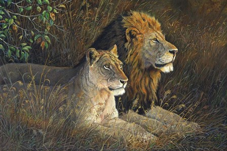Lions Domain by Terry Doughty art print