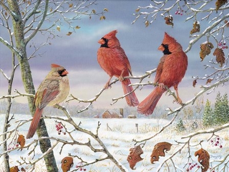 First Snow Cardinals by Terry Doughty art print