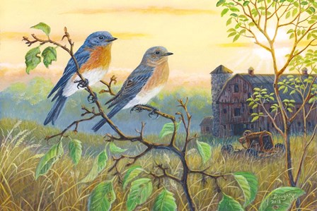 True Blue Bluebird by Terry Doughty art print