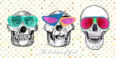 The Evolution of Funk by Steven Hill art print