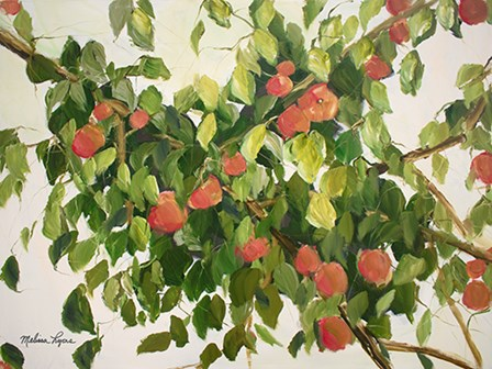 Apple Tree by Melissa Lyons art print