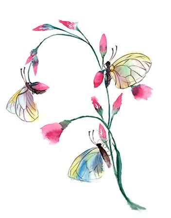 Flower by Olga Shefranov art print