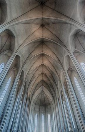 Iceland, Reykjavik, Ribbed Vaults In The Modern Cathedral Of Hallgrimskirkja by Mark Williford / DanitaDelimont art print