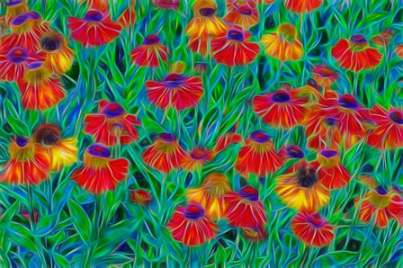 Oregon, Coos Bay, Abstract Of Helenium Flowers In Garden by Jaynes Gallery / Danita Delimont art print