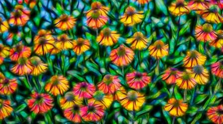 Oregon, Coos Bay Abstract Of Flower Garden by Jaynes Gallery / Danita Delimont art print
