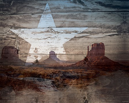 Desert Star by Kyra Brown art print