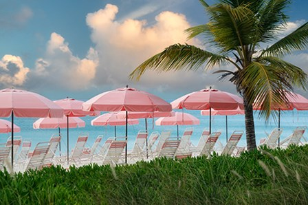 Pink Umbrella by Dennis Frates art print