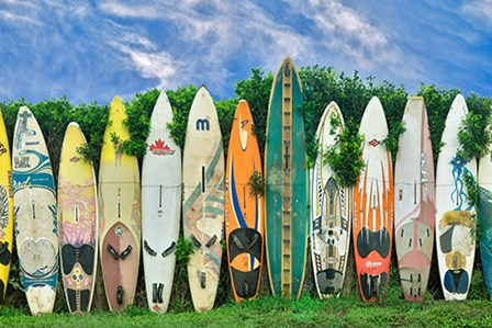 Surfboards by Dennis Frates art print