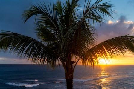 Palm Tree Sunset by Dennis Frates art print