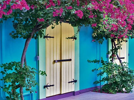 Double Doors by Dennis Frates art print