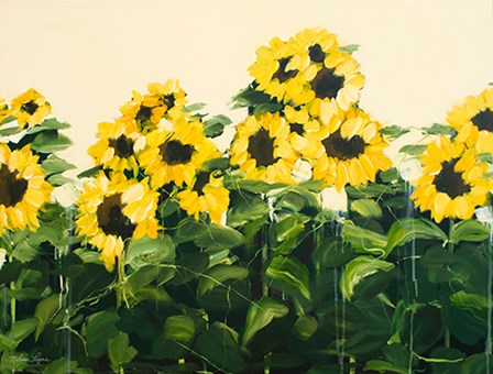 Sunflowers by Melissa Lyons art print
