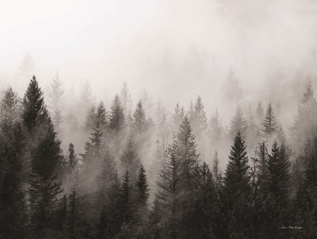 Forest by Seven Trees Design art print