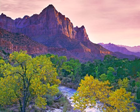 Utah, Zion National Park The Watchman Formation And The Virgin River In Autumn by Jaynes Gallery / Danita Delimont art print
