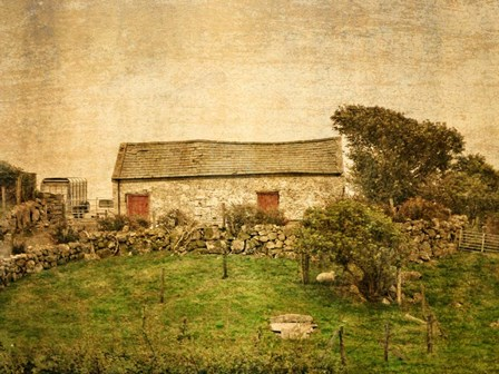 Irish Cottage by Graffi*tee Studios art print