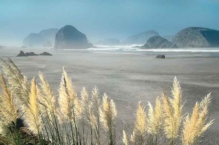 Pampas Beach by Dennis Frates art print