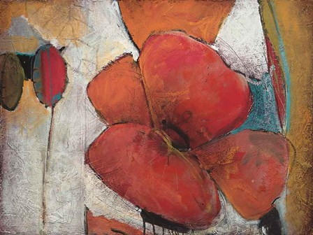 Full Blossom I by Don Li-Leger art print