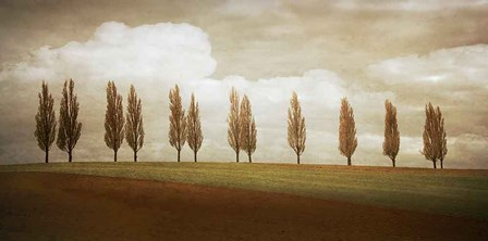 Before the Valley by Heather Jacks art print