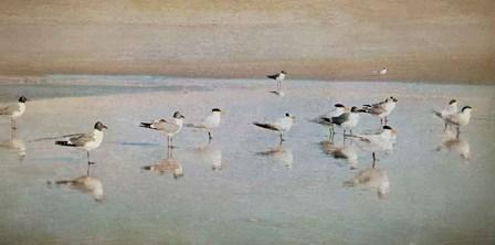 Coastal Reflections by Heather Jacks art print