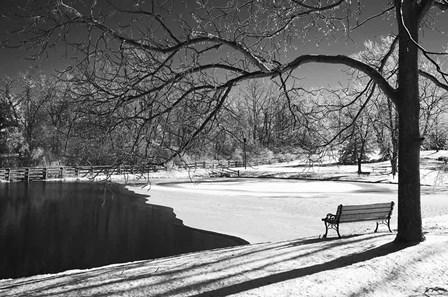 Heritage Pond In Winter by Monte Nagler art print