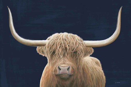 Highland Cow Navy by James Wiens art print